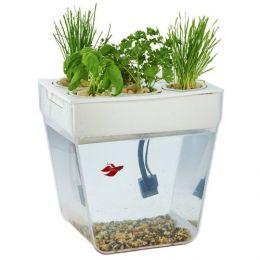 Акваферма «AquaFarm»